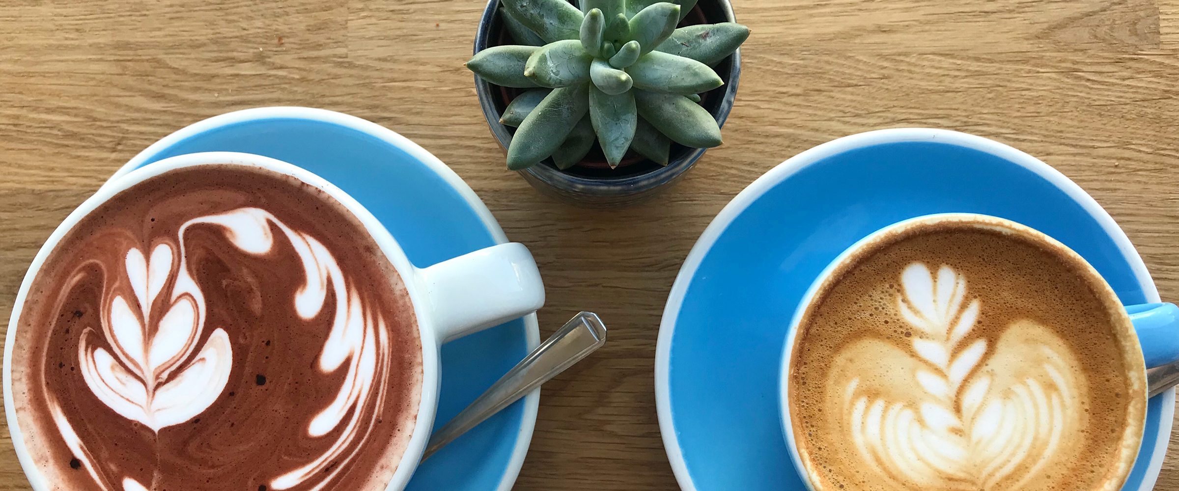 44 Poets | Speciality Coffee